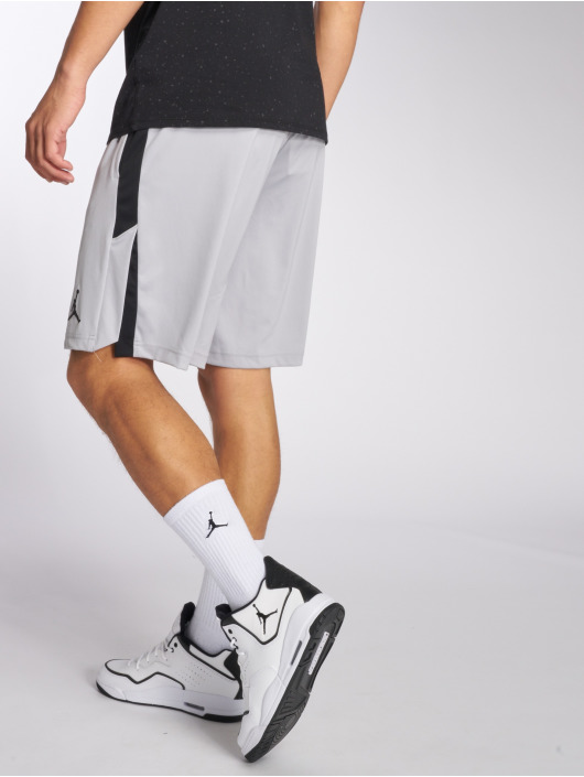 Jordan Shorts Dri-Fit 23 Alpha Training grå