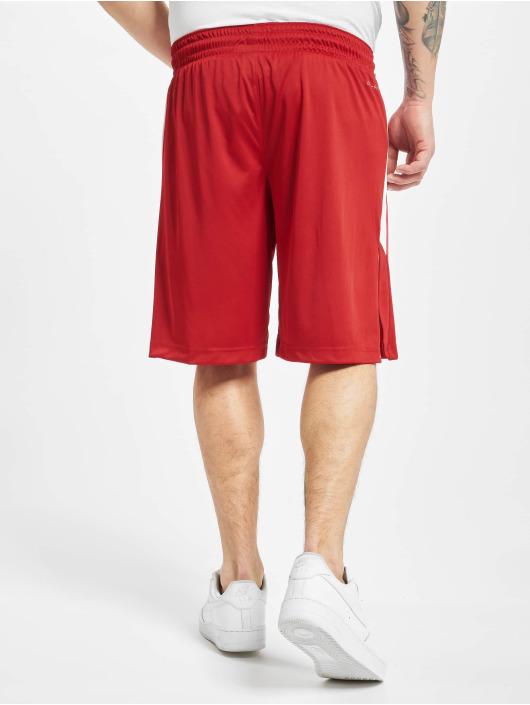Jordan Shorts Dry 23 Alpha Dry Knit red