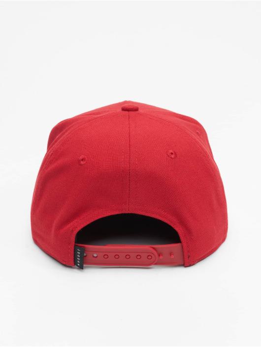 Jordan Snapback Caps Jan Cropped barvitý