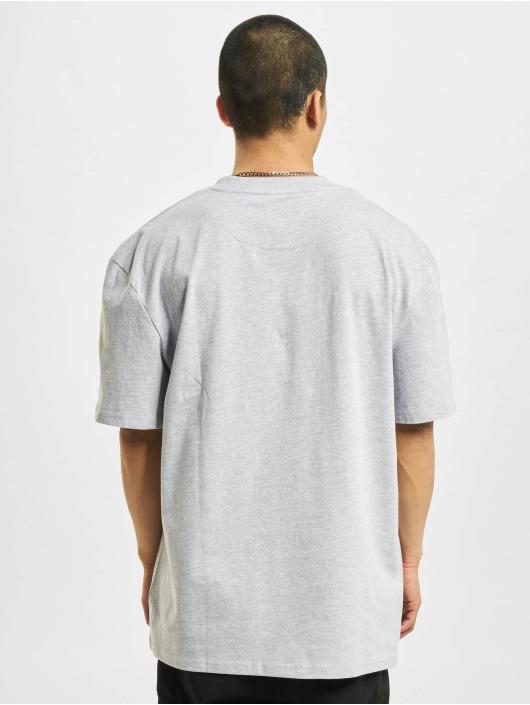 Karl Kani T-shirts Signature Kkj grå