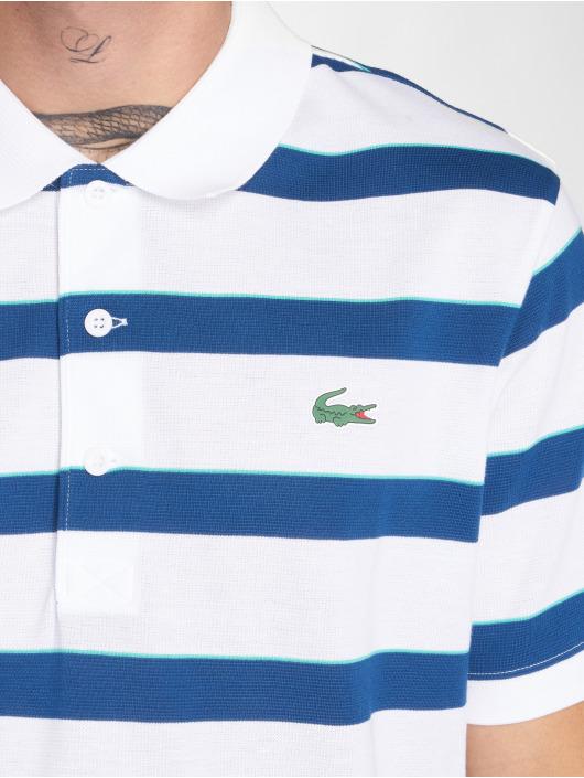 Lacoste Poloskjorter Stripe hvit