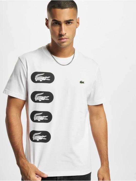 Lacoste T-paidat Logo valkoinen