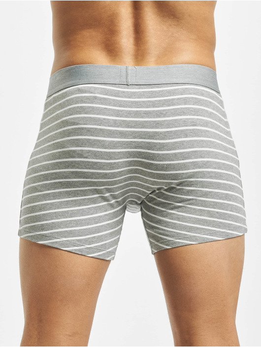 Levis® Dobotex Boxershorts Vintage Stripe YD 2P grau