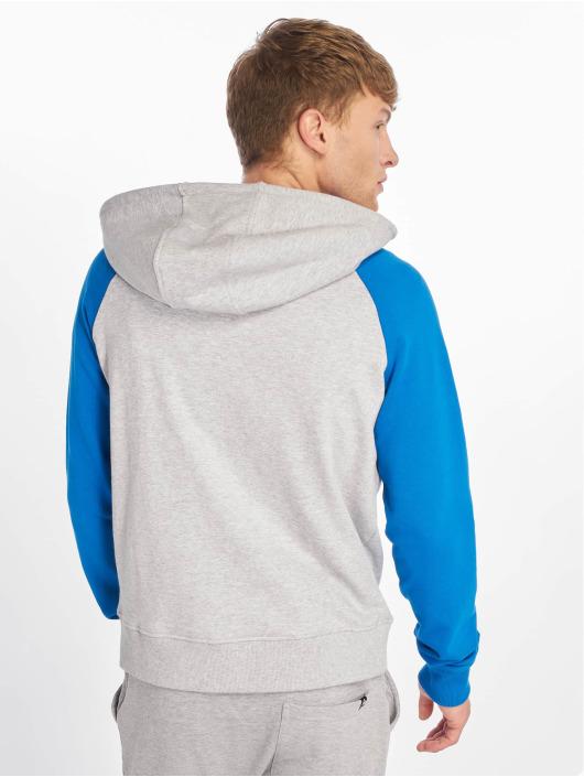 Lifted Bluzy z kapturem Nabi szary