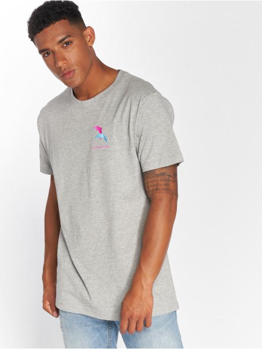 Mister Tee T-paidat Dolphin harmaa
