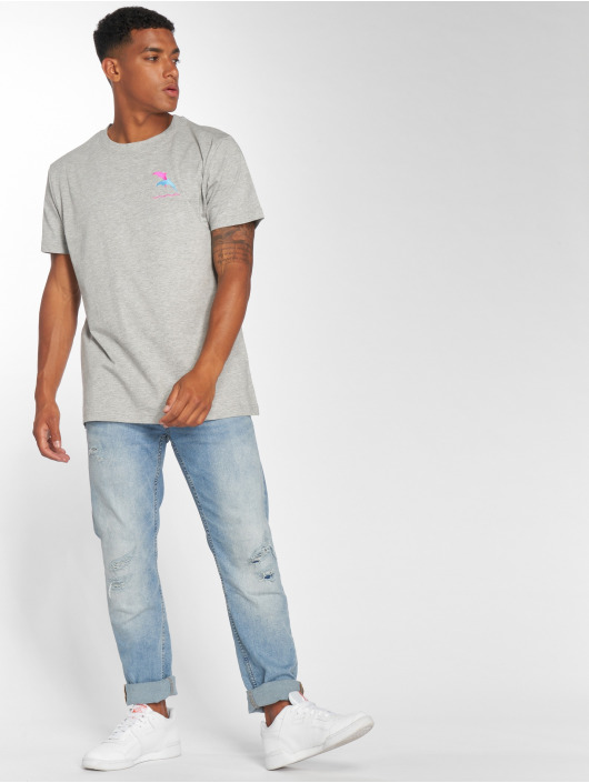Mister Tee T-skjorter Dolphin grå