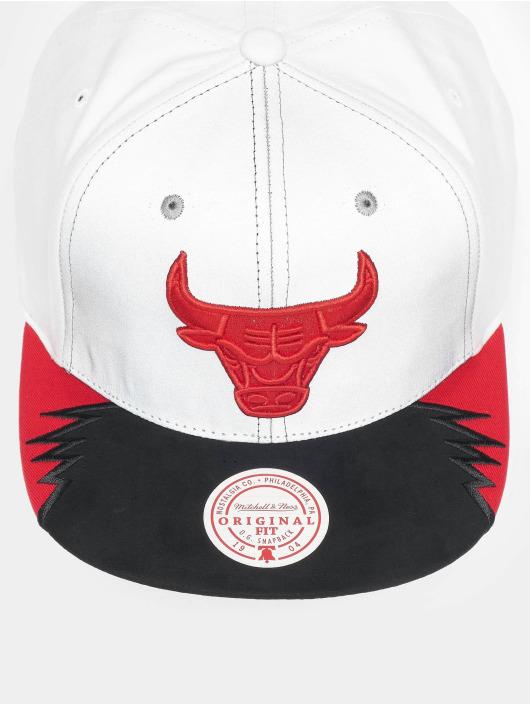 Mitchell & Ness Snapback Caps Day 5 Chicago Bulls grå
