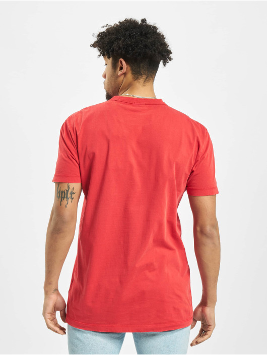 Napapijri T-skjorter Sakat red