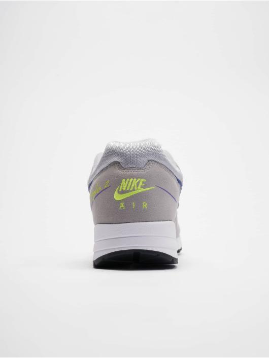 Nike Baskets Skylon II gris