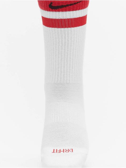 Nike Ponožky Everyday Plus Cush Crew 3-Pack biela