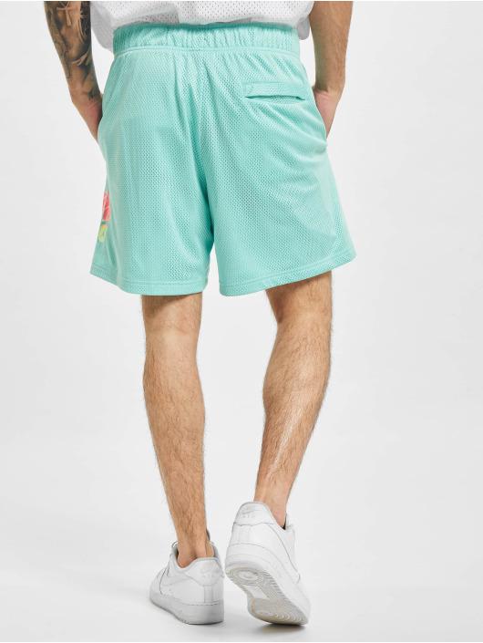 Nike Shorts M J Sprt Dna Hbr Msh türkis
