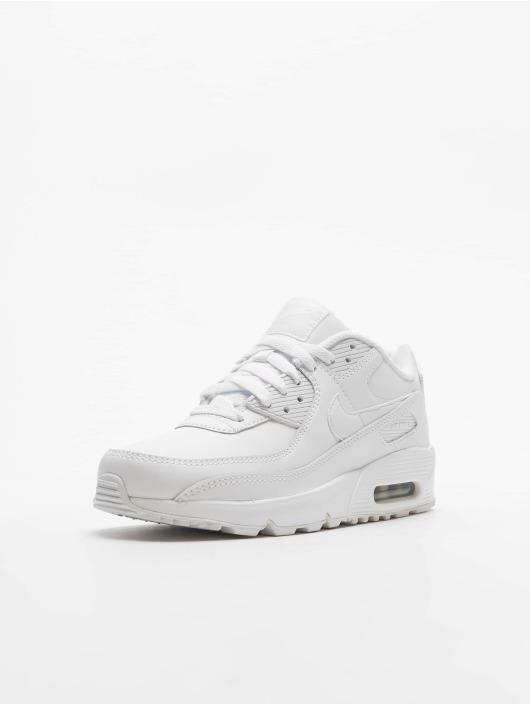 Nike Air Max 90 Ltr (GS) Sneakers WhiteWhiteMetallic SilvernWhite