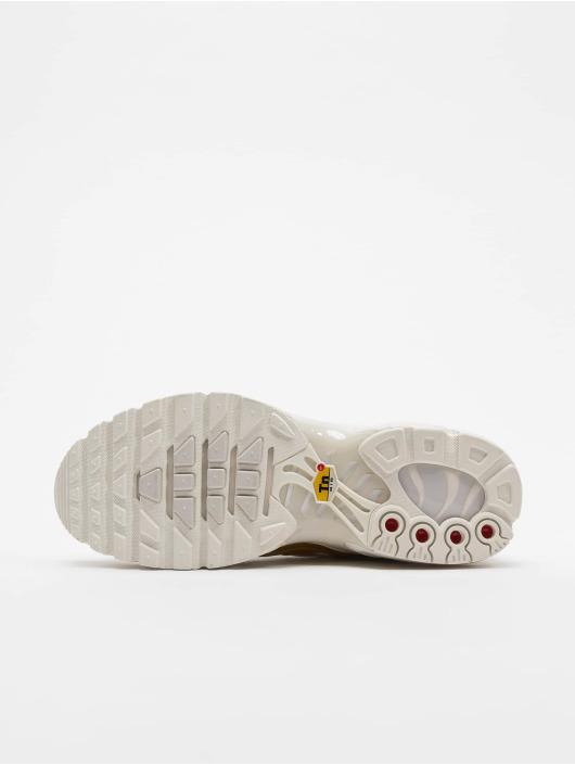 Nike Sneakers Air Max Plus gray