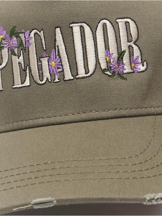 PEGADOR Snapback Embroidery Destroyed olivová