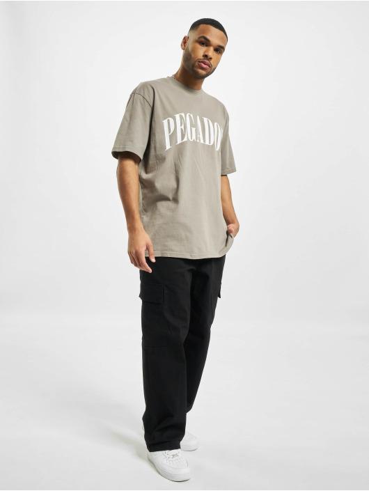 PEGADOR T-shirt Cali Oversized grå