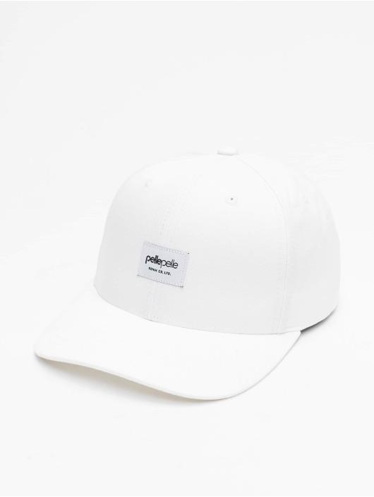Pelle Pelle Snapback Caps Core-Porate Curved hvit