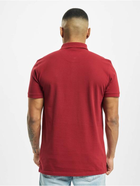 Petrol Industries Koszulki Polo Polo czerwony