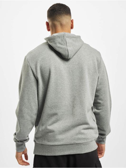 Puma Bluzy z kapturem Logo szary