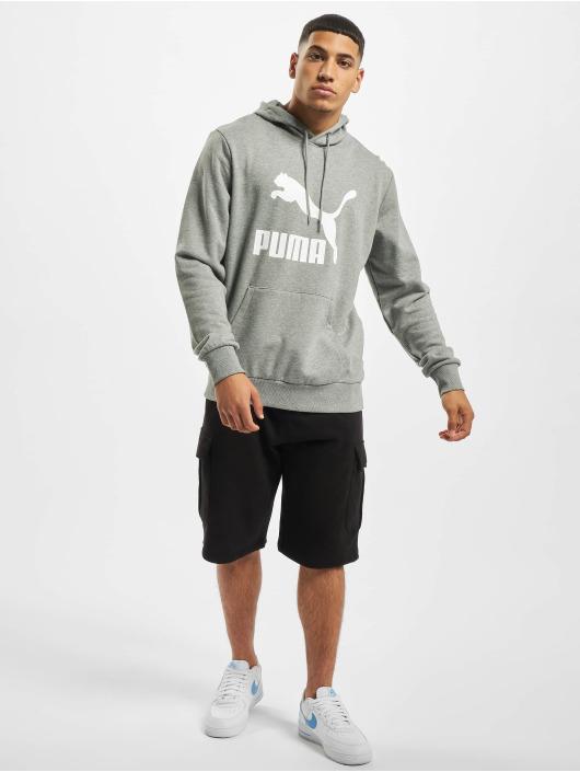 Puma Hoodie Logo grey
