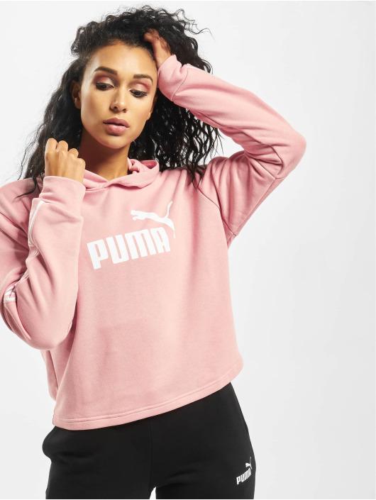 Puma Hoodie Amplified rose