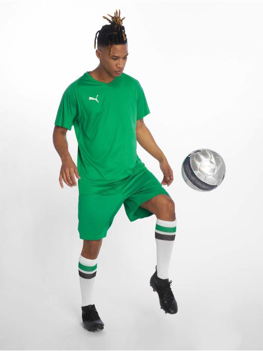 Puma Performance Šortky Liga Core zelená