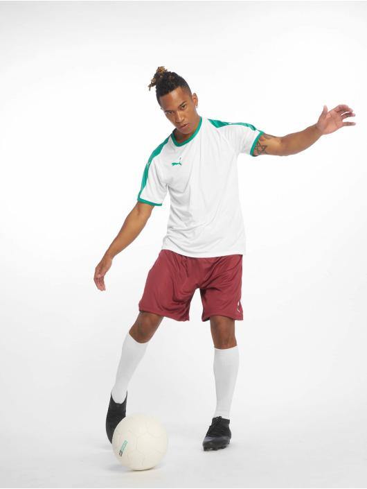 Puma Performance Pantalón cortos Liga rojo