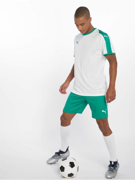 Puma Performance shorts LIGA groen