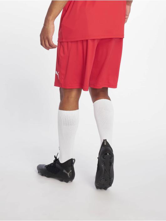 Puma Performance Shorts Liga Core red