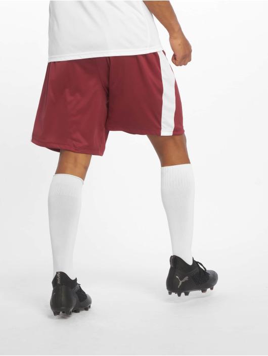 Puma Performance Shorts Liga red