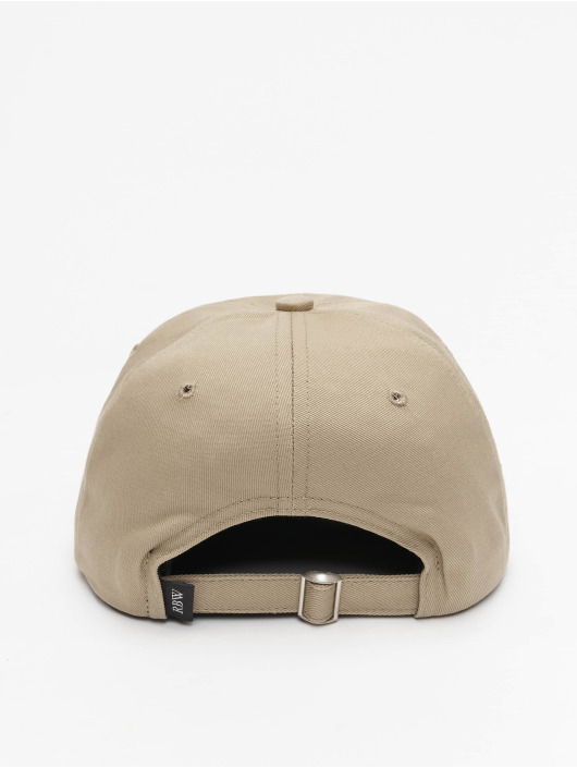 Raised by Wolves snapback cap Restricted Dad beige