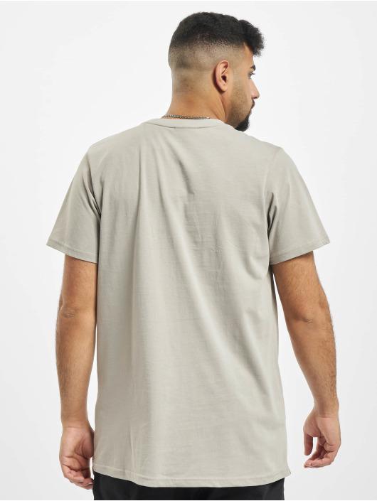 Reell Jeans Tričká Regular Logo šedá