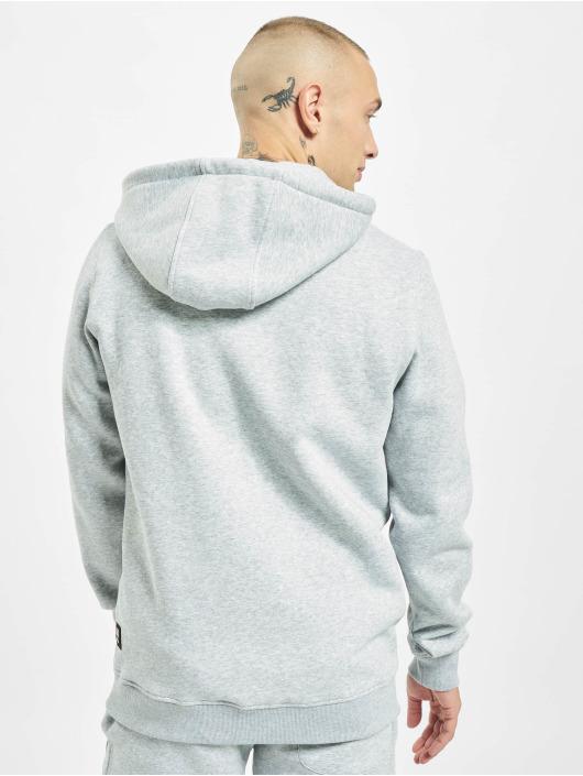 Southpole Hoodies Nasa Astronaut grå