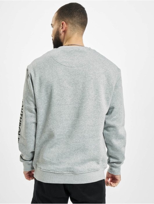 Southpole Jersey Halfmoon gris
