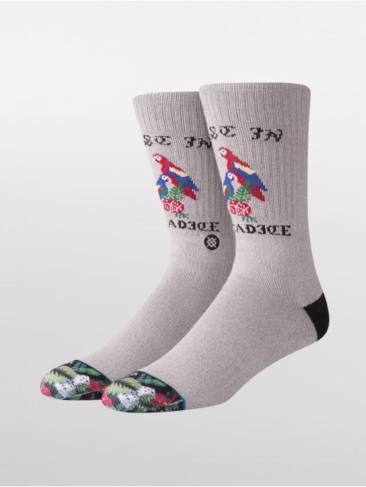 Stance Ponožky Paradice šedá