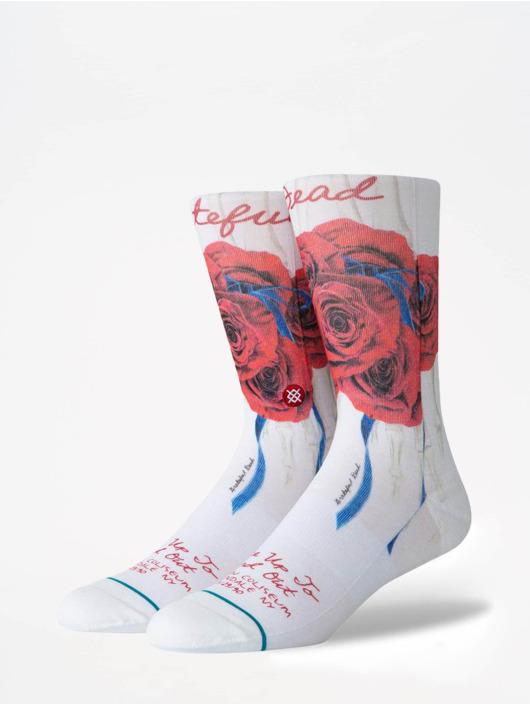 Stance Ponožky Anthem Find Out biela
