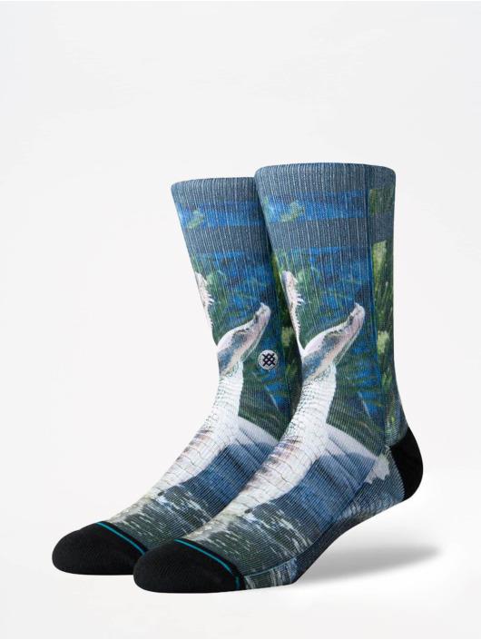 Stance Socken Foundation Alberta blau