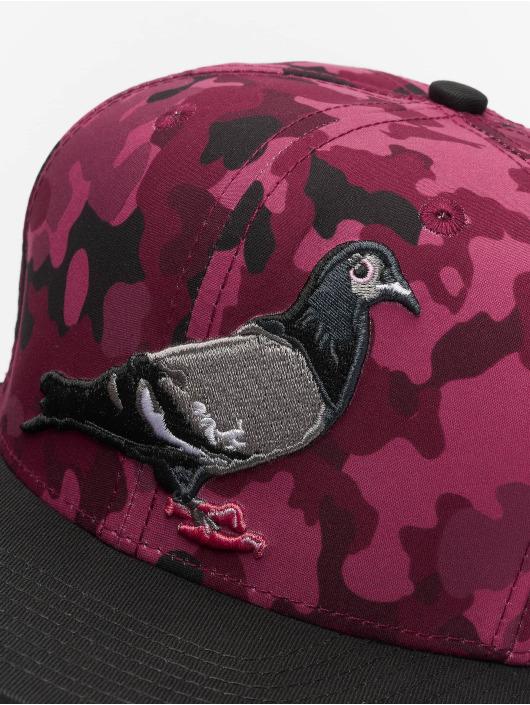 Staple Pigeon Casquette Snapback & Strapback Pigeon rouge