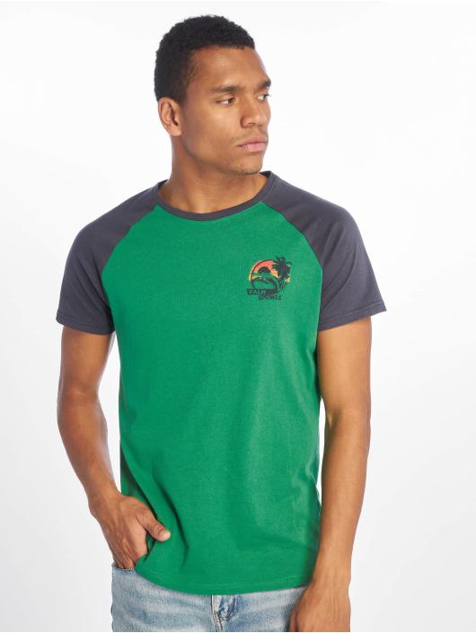 Sublevel T-paidat Palm Springs vihreä