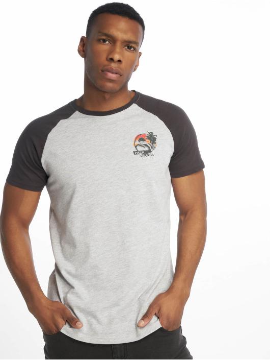 Sublevel t-shirt Haka grijs