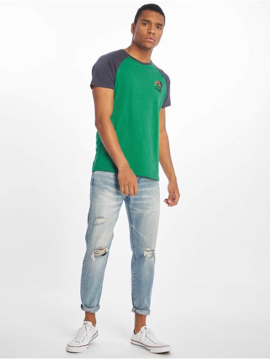 Sublevel T-Shirt Palm Springs grün