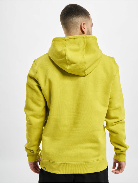 The North Face Hoodie Face Drepeak Plv Hd green