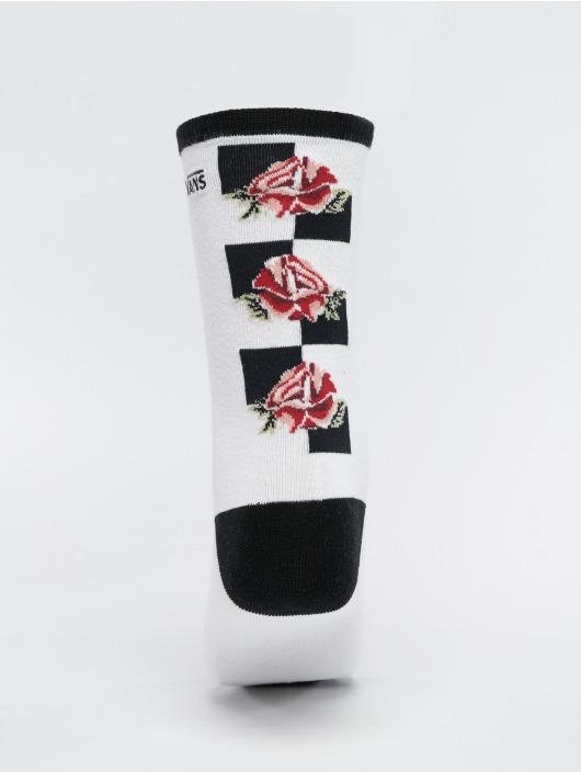 Vans Chaussettes Rose Ticker blanc