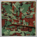 MSTRDS bandana Special Print groen 0