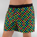 Quiksilver Short de bain Mini Check VL 15 multicolore 0