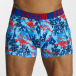 Zaccini Boxershorts Painted Spring blau 1