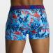 Zaccini Boxershorts Painted Spring blau 2