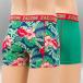 Zaccini Boxershorts Funny Flower grün 1