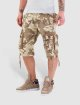 Alpha Industries Shorts Terminal C camouflage 0