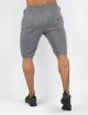 Beyond Limits Shorts Baseline grau 2