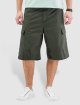 Carhartt WIP Shorts Columbia Ripstop olive 0